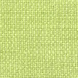 Canvas Parrot 5405 0000