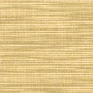 Dupione Bamboo 8013 0000
