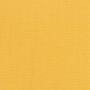 Spectrum Daffodil 48024 0000